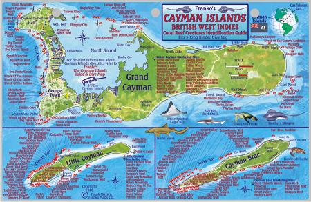 Cayman Islands Map Amp Fish Id Card