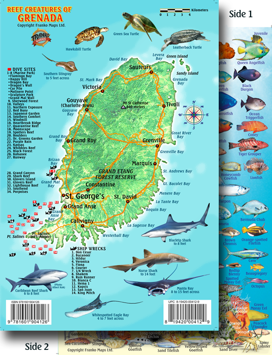 Map Fish ID Card - Map of grenada world