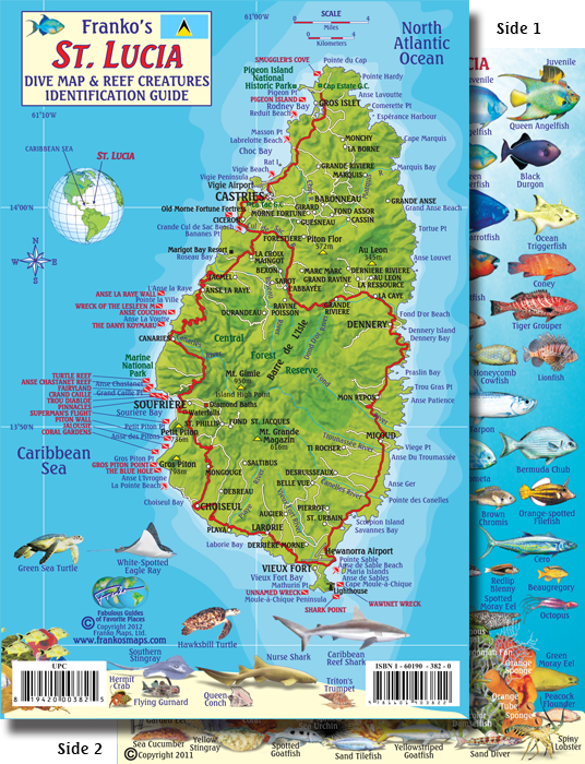 Lucia Map Fish ID Card - Saint lucia map