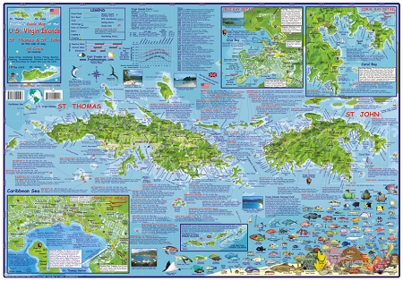US Virgin Island Folding Guide Dive Map
