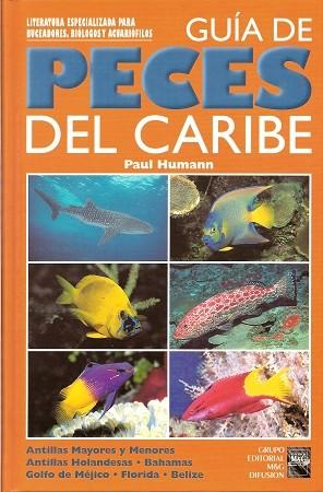 reef fish identification spanish version guia de peces del caribe