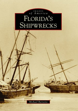 Florida's Shipwrecks Book