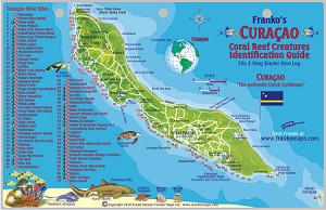 Curacao Map & Fish ID Card