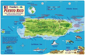 Puerto Rico Map & Fish ID Card