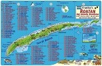 Roatan Map & Fish ID Card