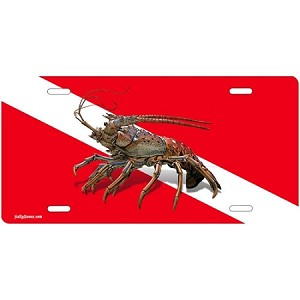Dive Flag with Lobster License Plate - Metal