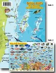 Belize Atolls Map & Fish ID Card